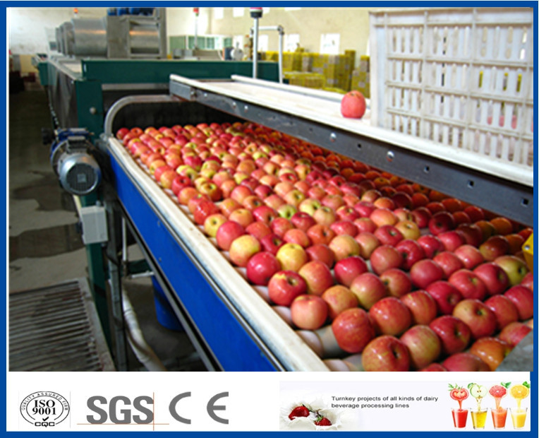 Fruit Juice Production Fruit And Vegetable Processing Device With SUS304 / SUS316 Steel