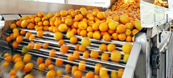 Engery Saving Orange Juice Production Industrial Orange Juice Machine ISO CE